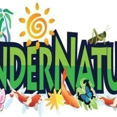 KinderNature All About Monarchs this Month!