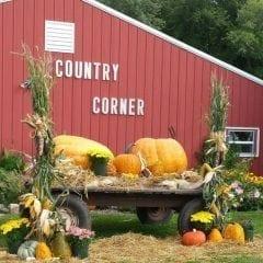 Country Corner Celebrating Opening Weekend!