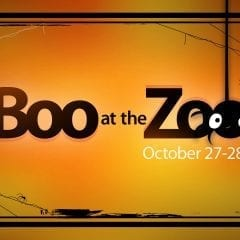 Boo at the Zoo Returns!