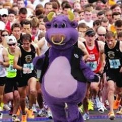 Pete the Purple Bull's Run with the Bull 5K Rescheduled!