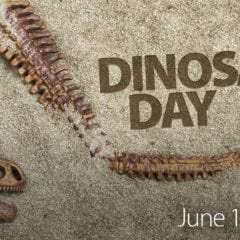 Explore the Truth About Dinosaurs at Niabi Zoo