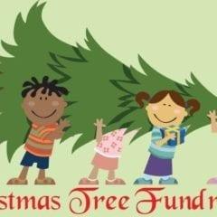 Christmas Tree Lot Opens at Brady Street Stadium