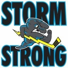 Quad City Storm Looking Forward To Year Three!