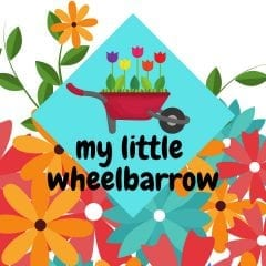 My Little Wheelbarrow at Fejervary Park