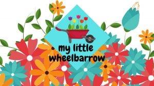My Little Wheelbarrow at Fejervary Park