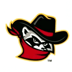 Quad City River Bandits Cancel Season