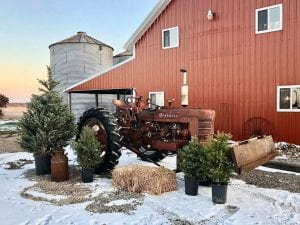 Enjoy A Country Christmas In Grandview