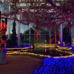 Quad City Botanical Center Is Putting On A Light Show!