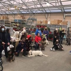 Rally Around Obstacles At All About Pets In Galesburg Today