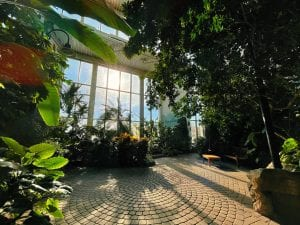 The popular Sun Garden had been open just Saturdays until April 1, when it reopened to seven days a week.