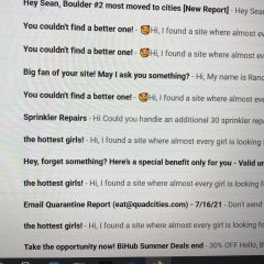 If You're Single And Looking For Company, Make Sure To Check Your Spam Folder